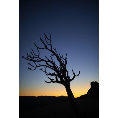 Magnificent Landscapes - ML 022