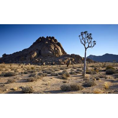 Magnificent Landscapes - ML 025