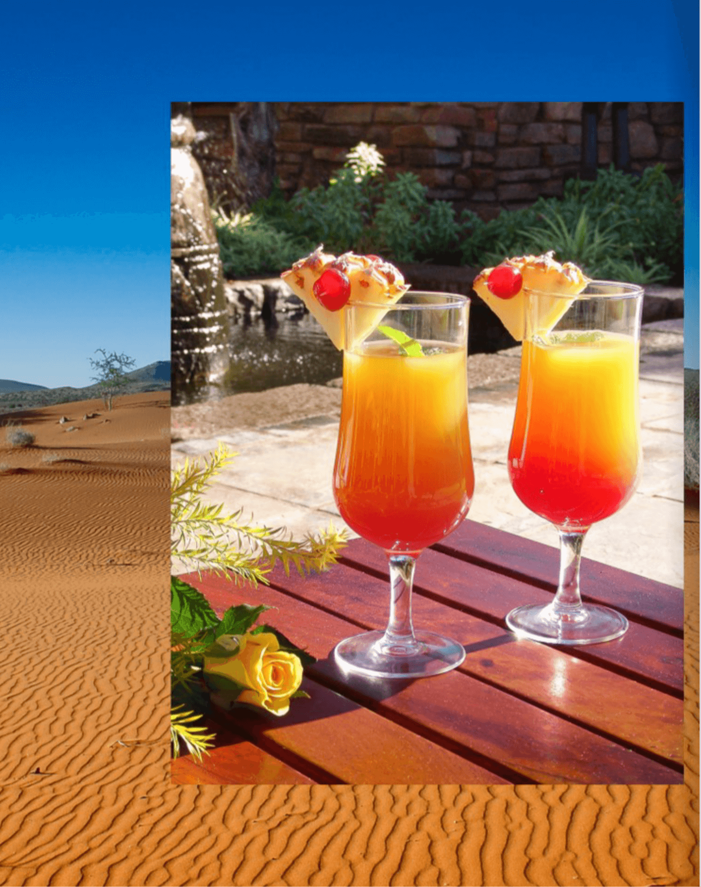 Digital Advertising Image - Kalahari Game Lodge